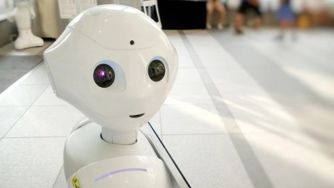 Resistance Is Futile: Robots May Be Taking Over the Travel