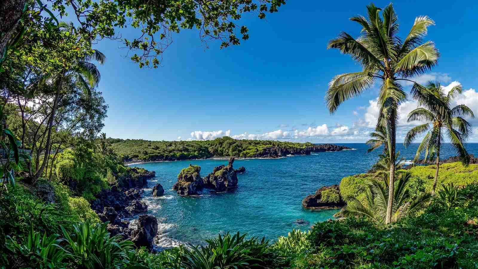 A view off the Road to Hana in Maui, Hawaii. (Photo by Sean Bernstein via Unsplash)