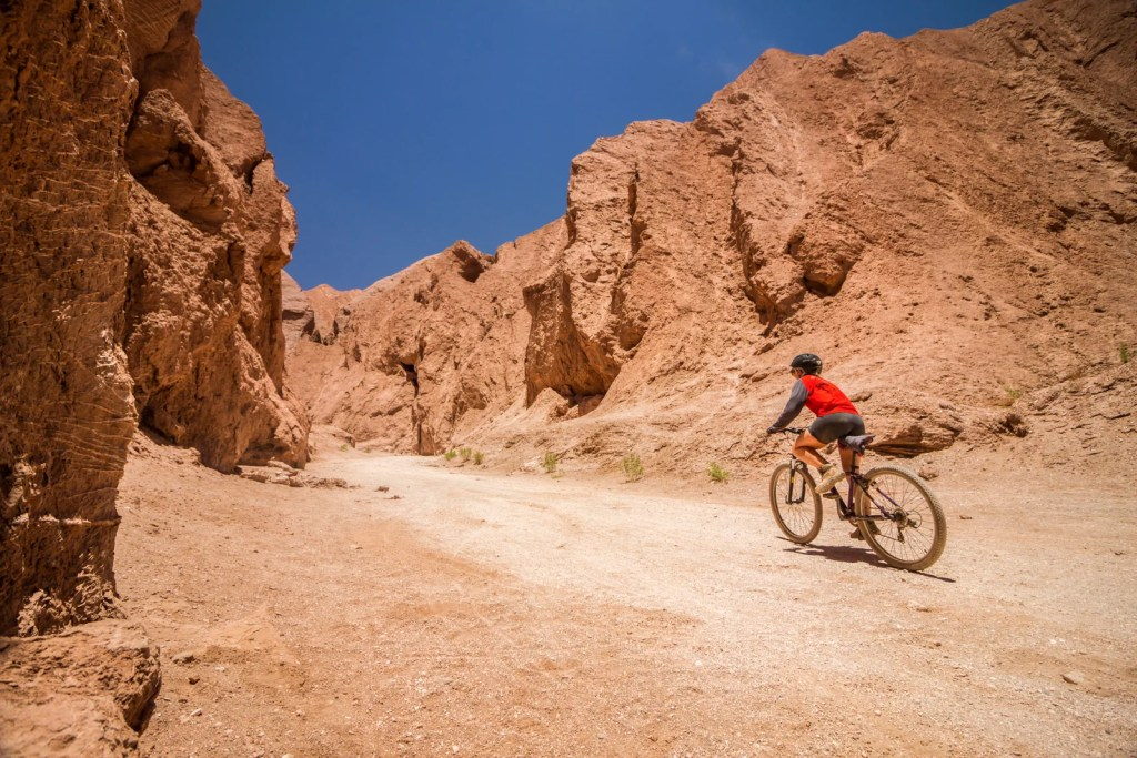 Cycling through the Atacama Desert. (Photo via Shutterstock)