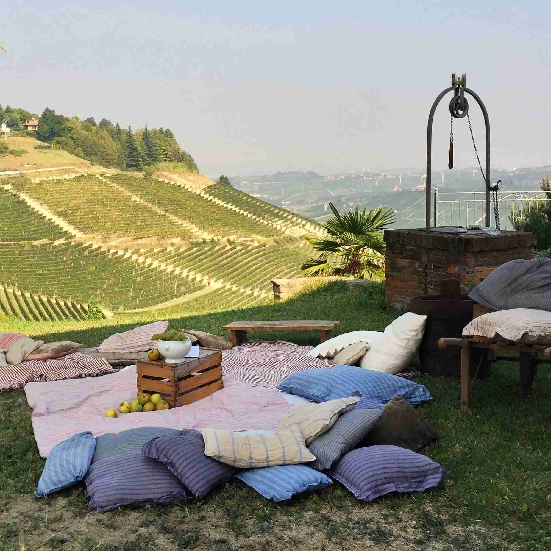 A vineyard in Asti, a Piedmont town known for its sparkling wines. Photo by Laura Itzkowitz