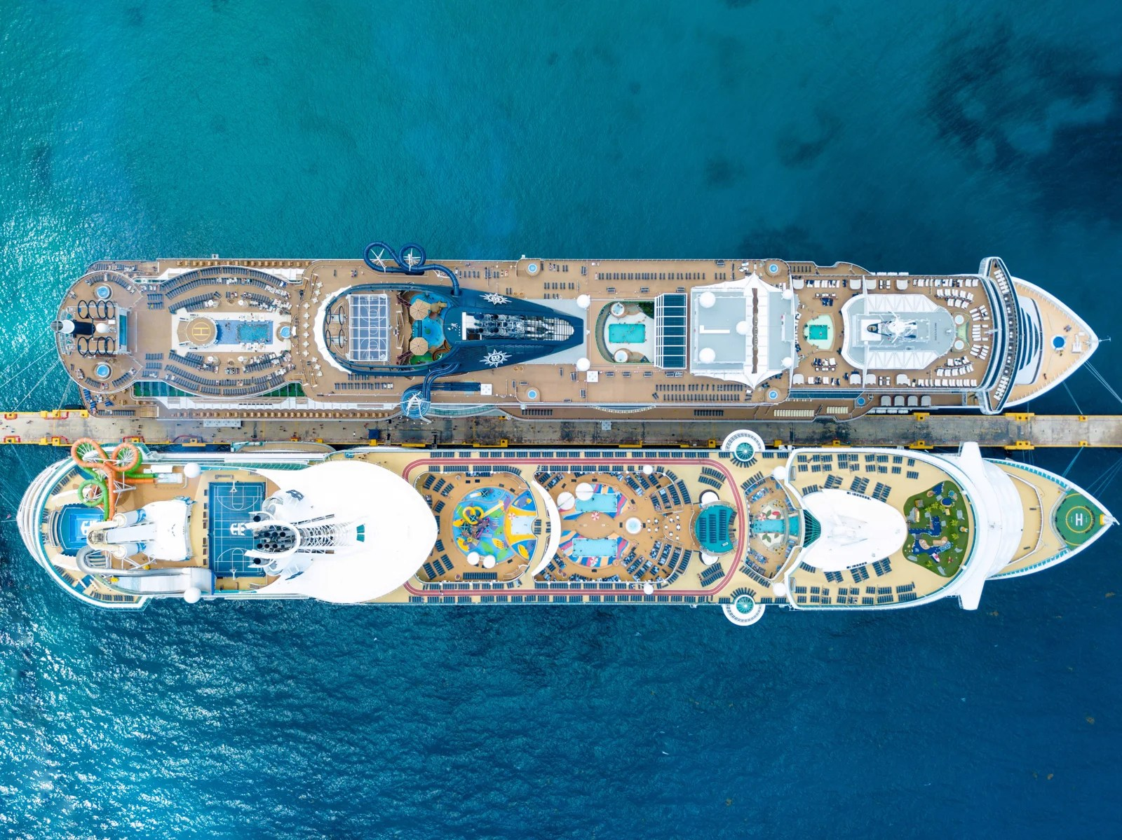 Which Cruise Brand Is Best for You? A Guide to 16 of the Most Popular Lines