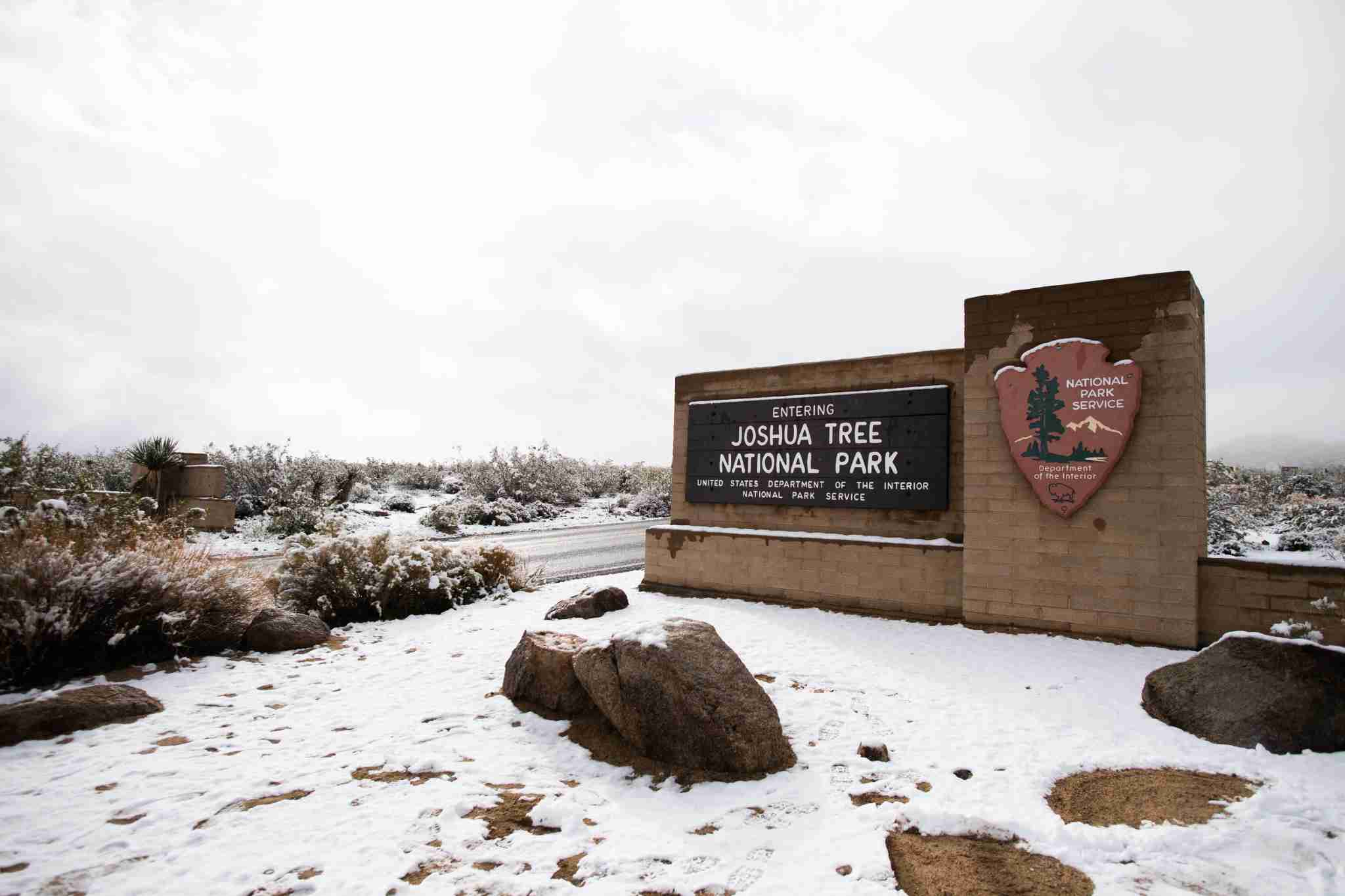 Snow Joshua tree national park California