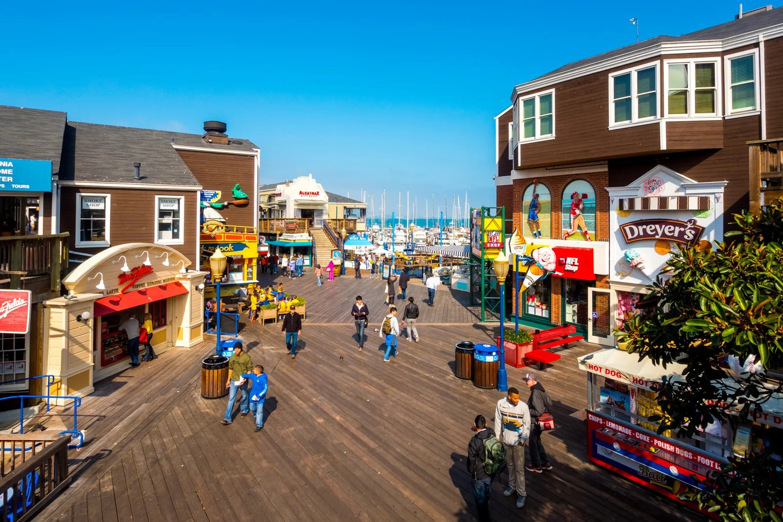 Exploring San Francisco With Kids: Where to Go and What to Do