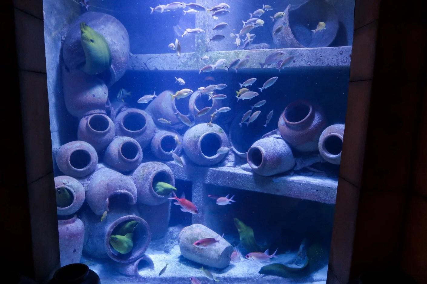 Plaque Beton Cloture Leroy Merlin decor aquarium atlantis - decoration