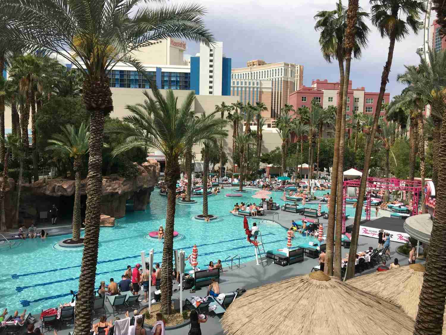 Las Vegas with kids - Flamingo Pool