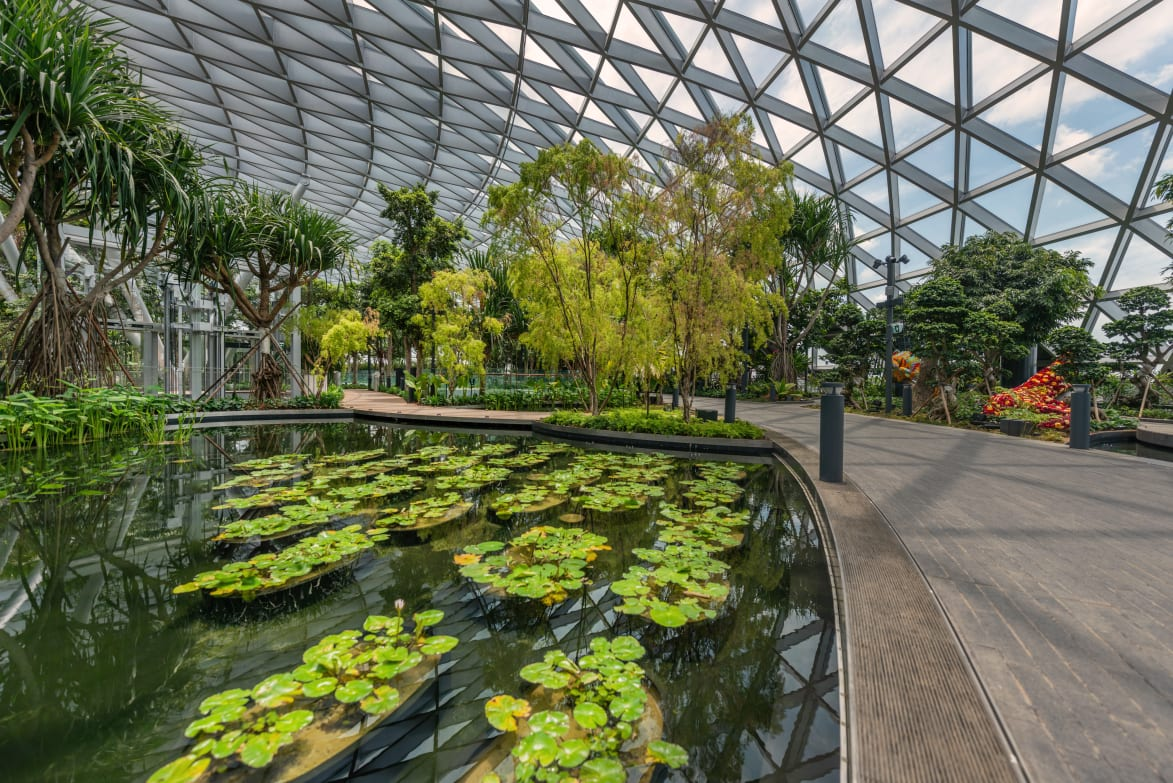 Nature Inspired Amusement Park Opens In Singapore S Airport