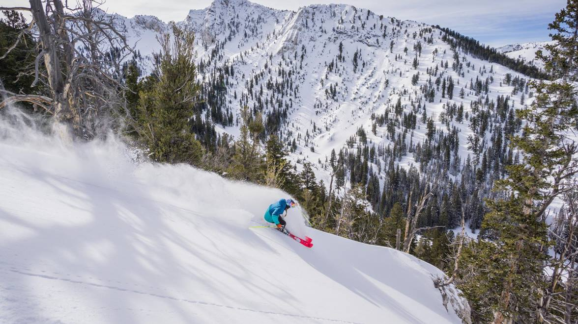 (Photo courtesy of Solitude Mountain Resort.)