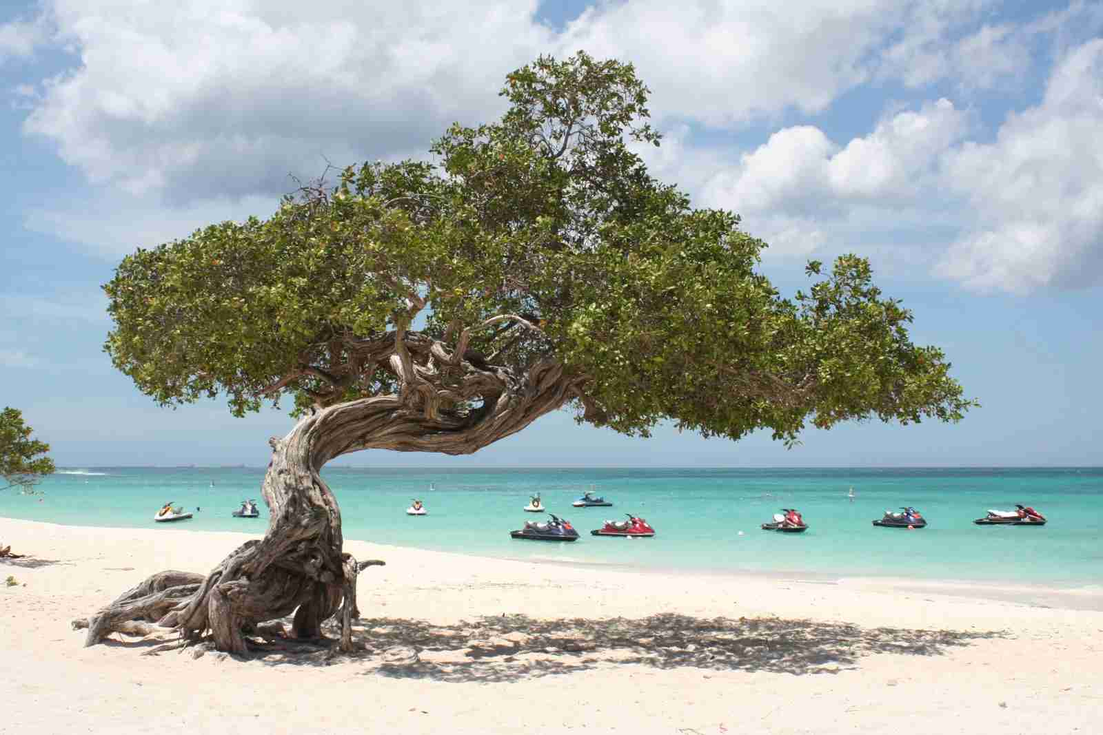 Eagle Beach in Aruba. (Photo by Marc Boettinger / Getty Images)