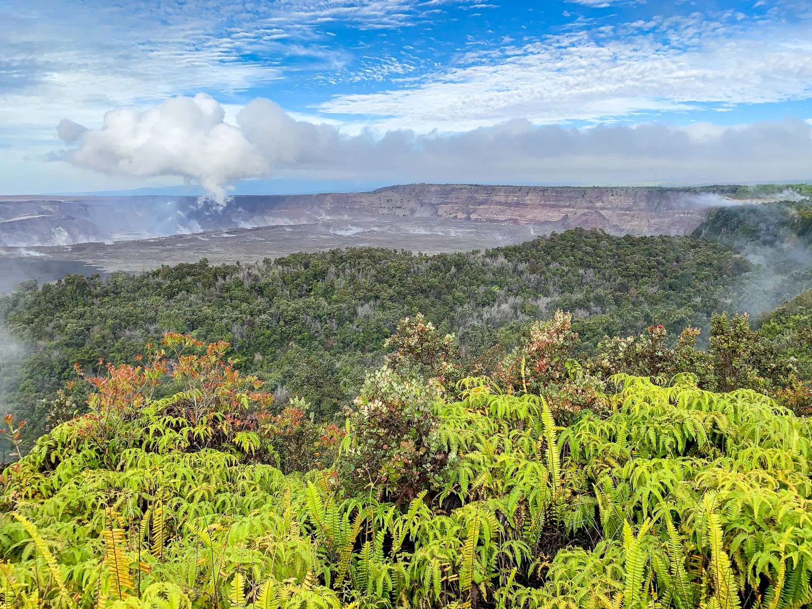 Planning the perfect visit to Volcanoes National Park