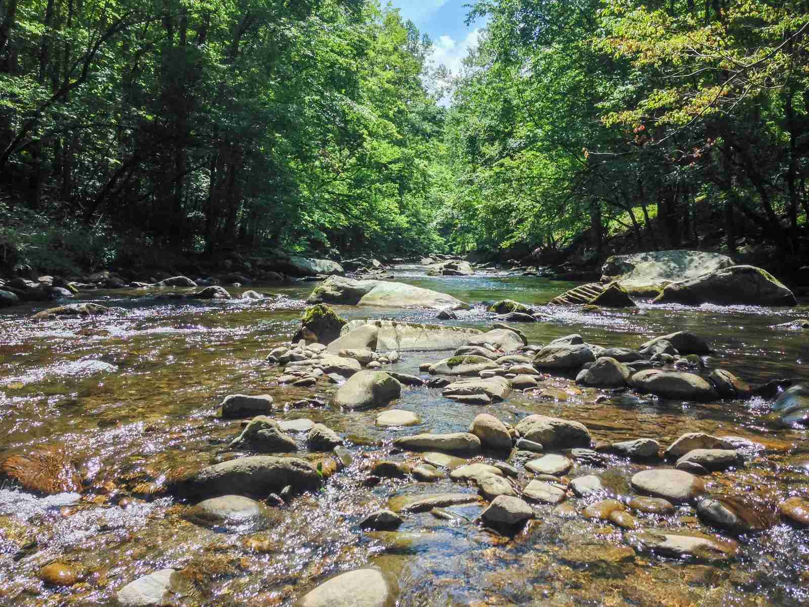 Little Pigeon River (Photo by Caitlin Riddell/The Points Guy)