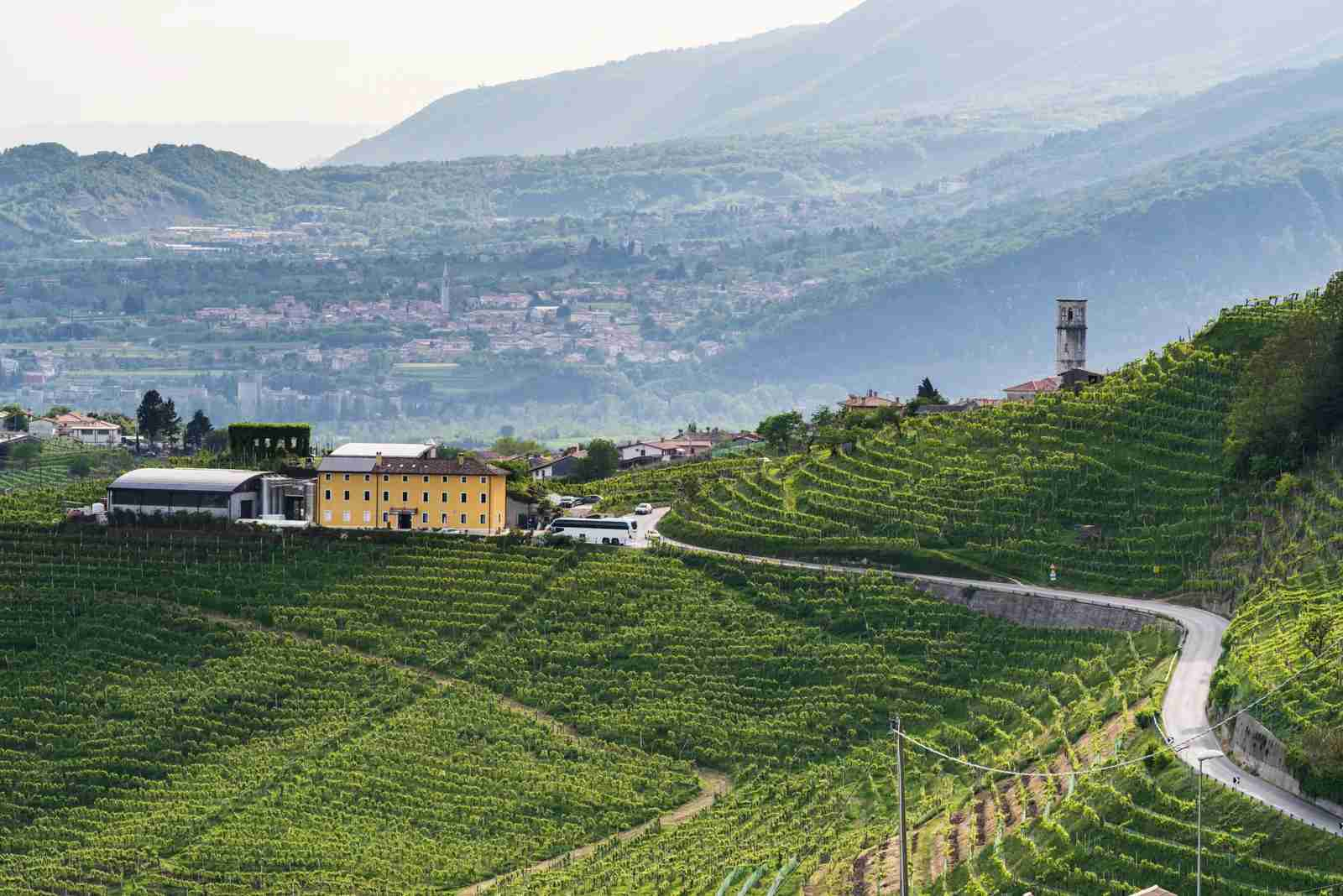 The Santo Stefano di Valdobbiadene vineyard in the Prosecco Hills. (Photo by GitoTrevisan/Getty Images)