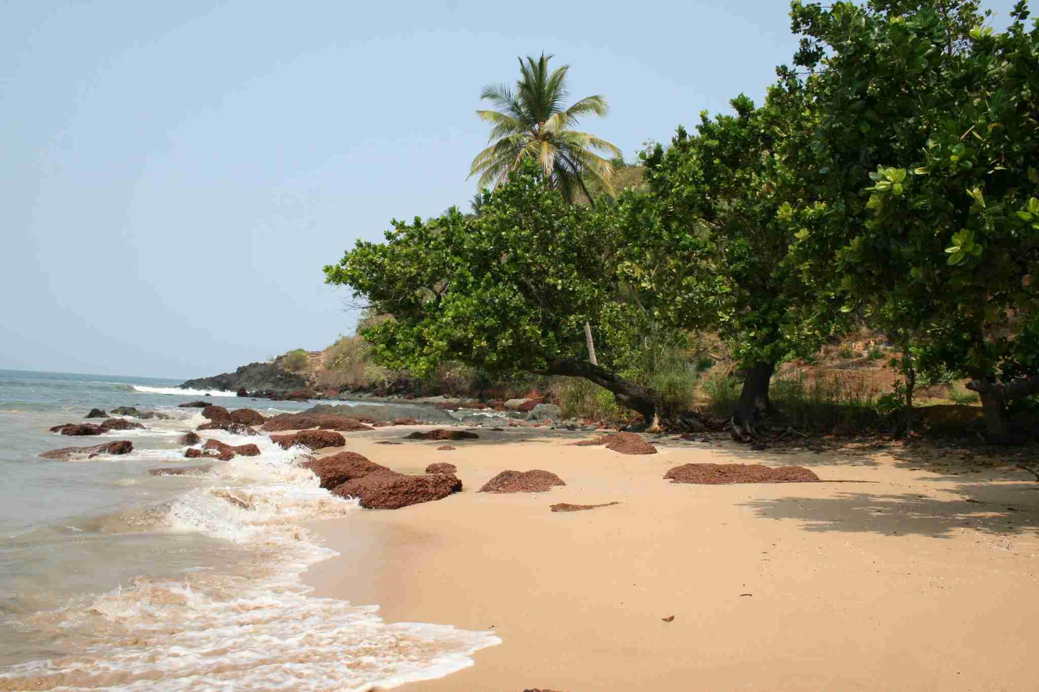 A beach in Goa, India. Photo by Lori Zaino/The Points Guy.