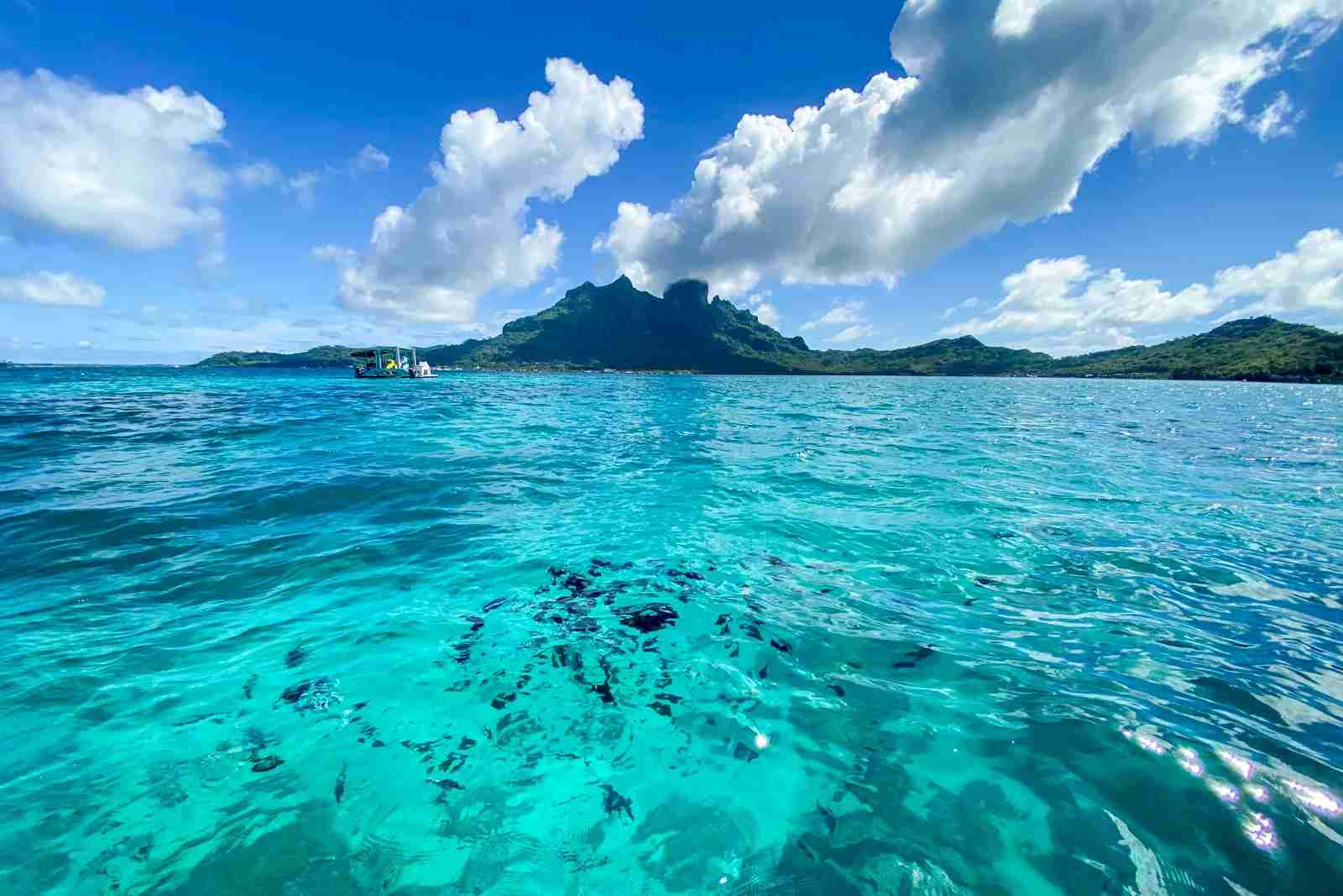 French Polynesia (Photo by Summer Hull/The Points Guy)