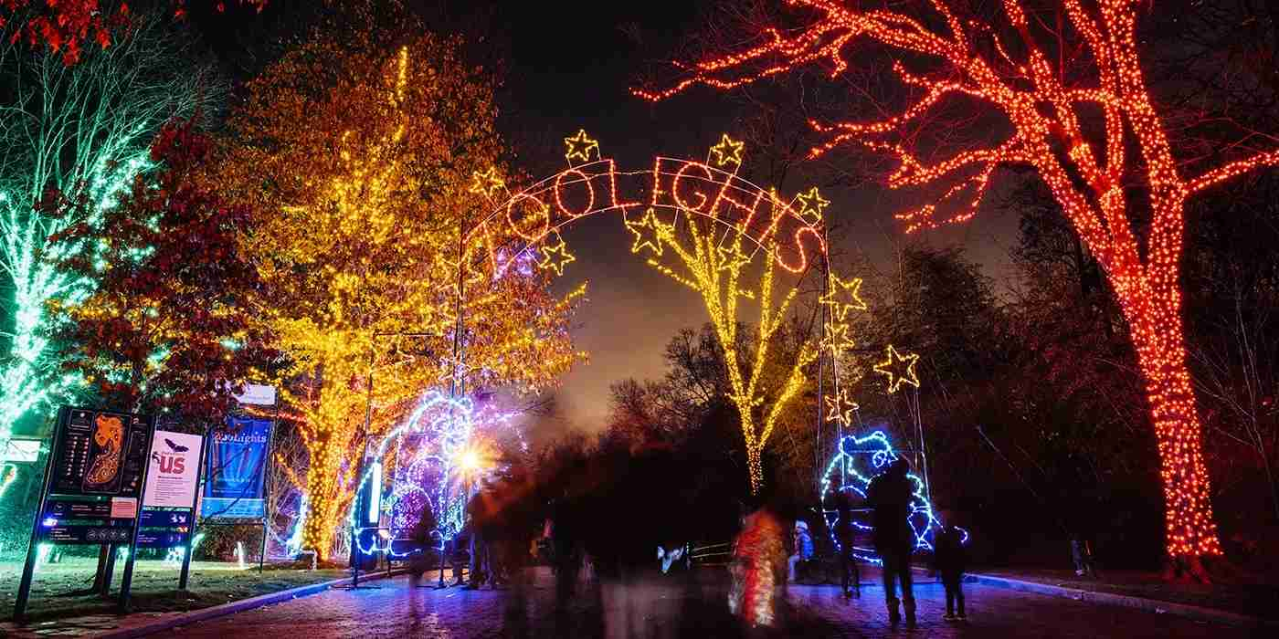 The Zoolights in DC. (Photo courtesy of nationalzoo.si.edu)