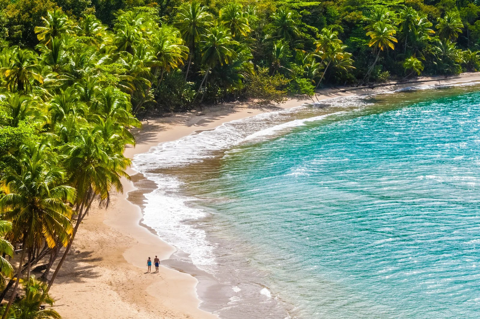 Now is the perfect time for a trip to Dominica