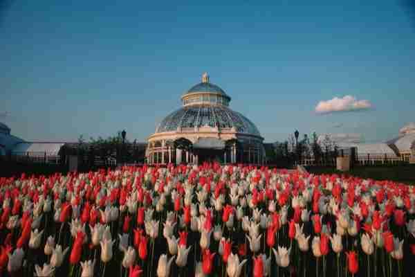 The Bronx Botanical Garden. (Photo by Hiroyuki Matsumoto./Getty Images)