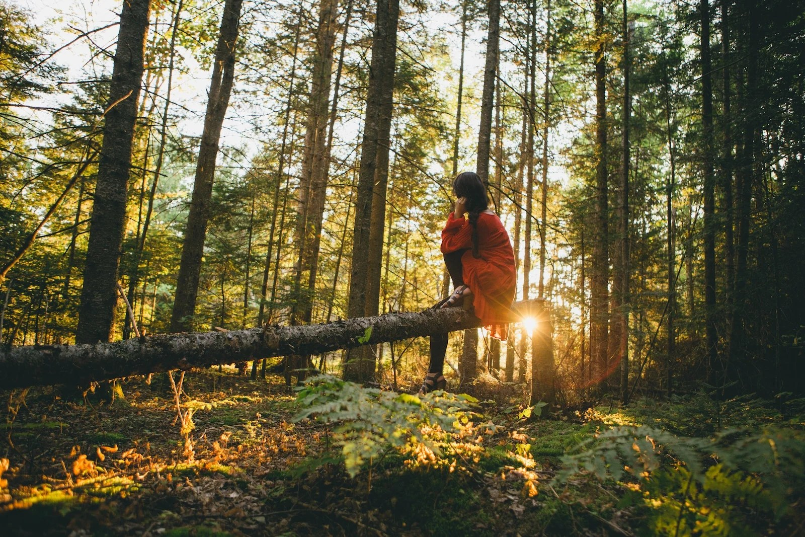 How to be a more eco-friendly traveler