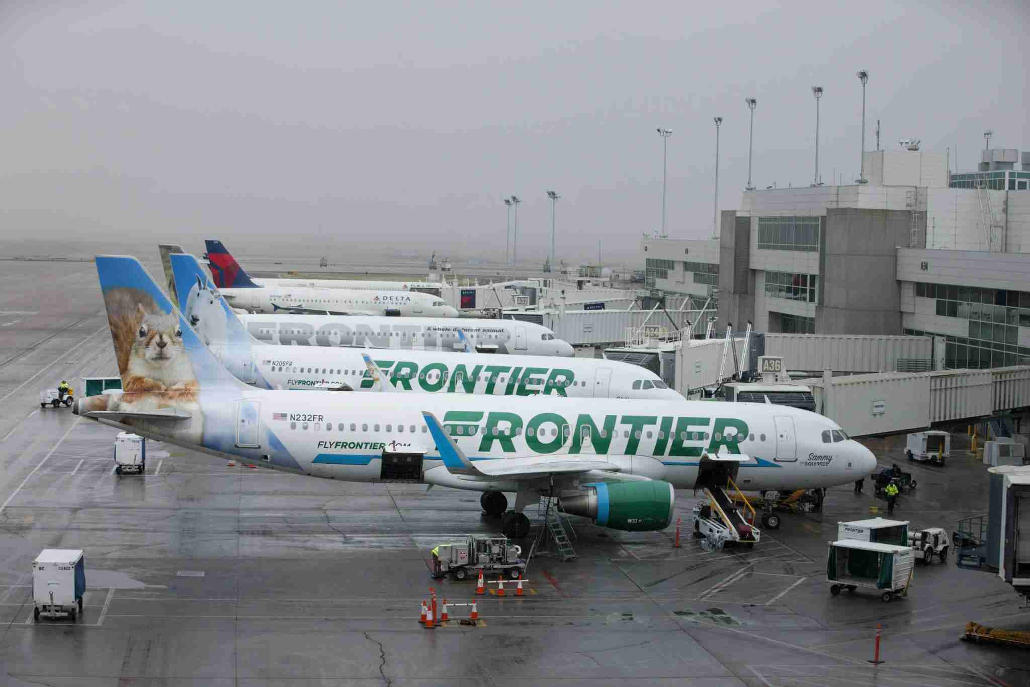 Frontier Airlines Inc. planes sit at gates at Denver International Airport (DIA) in Denver, Colorado, U.S., on Tuesday, April 4, 2017. Frontier Airlines Inc., the no-frills U.S. carrier whose aircraft feature animals on the tails, is aiming to go public as soon as the second quarter, people with knowledge of the matter said. Photographer: Matt Staver/Bloomberg via Getty Images