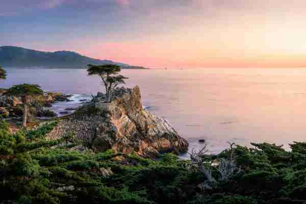 The Lone Cypress on the coast of Monterey. (Photo by Dominic Jeanmaire/500px/Getty Images)