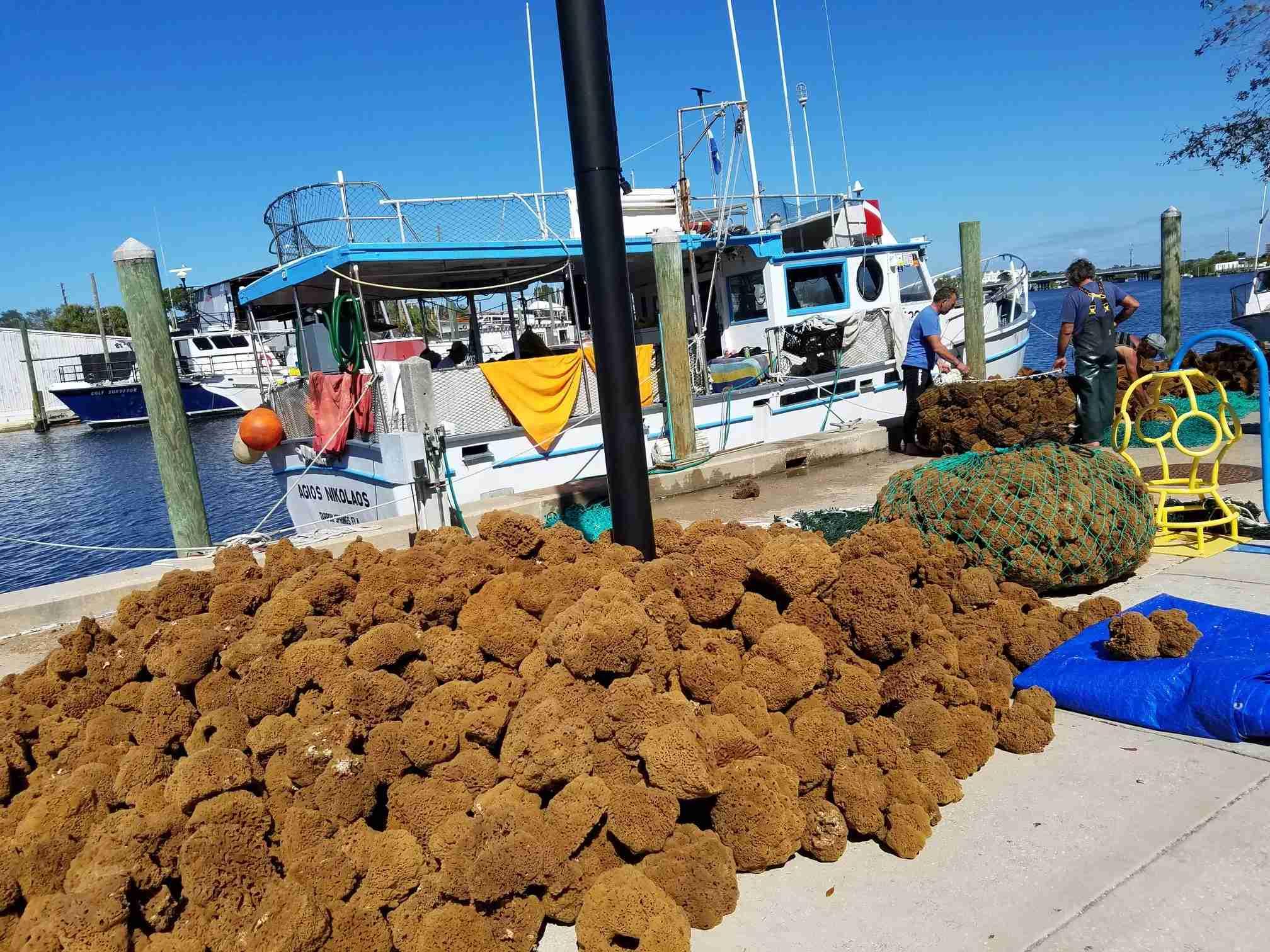 (Photo courtesy of Tarpon Springs Sponge Docks