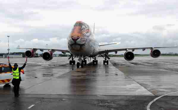 ST PETERSBURG, RUSSIA JUNE 2, 2019: A Boeing 747-400 passenger plane with a face of an Amur tiger painted on its nose cone operated by the Rossiya Airlines at St Petersburg