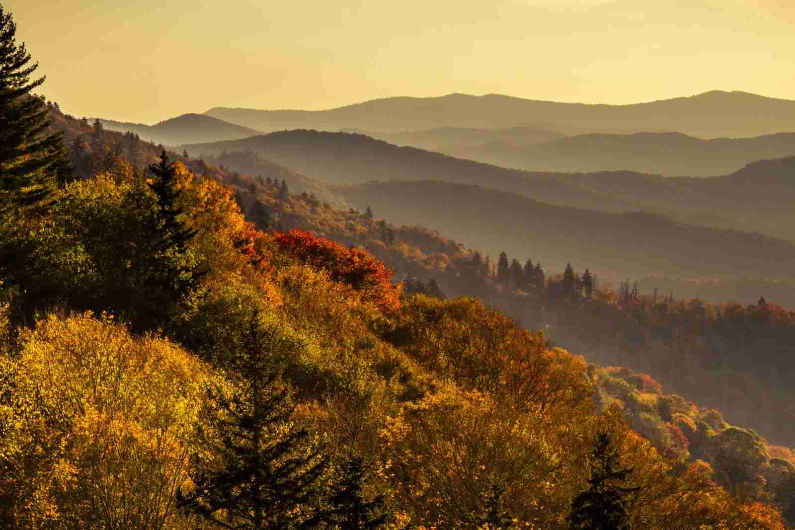 Great Smoky Mountains National Park. (Photo by Teri/Adobe Stock)