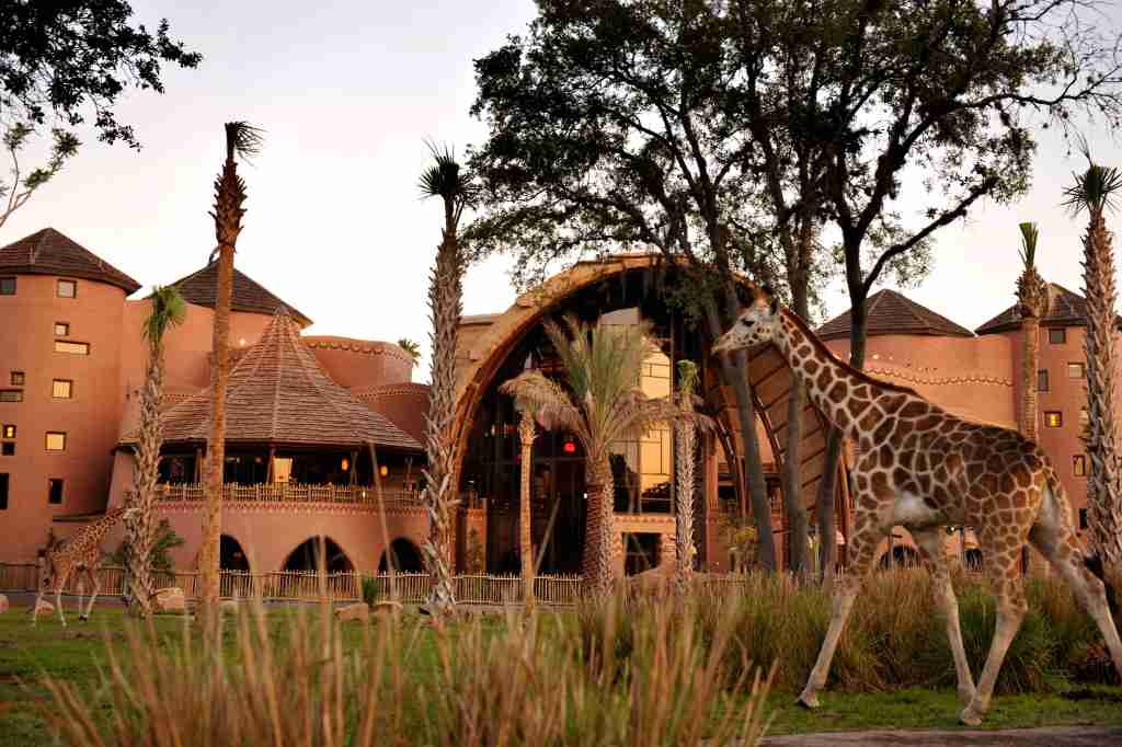 Animal Kingdom Lodge DVC Villa