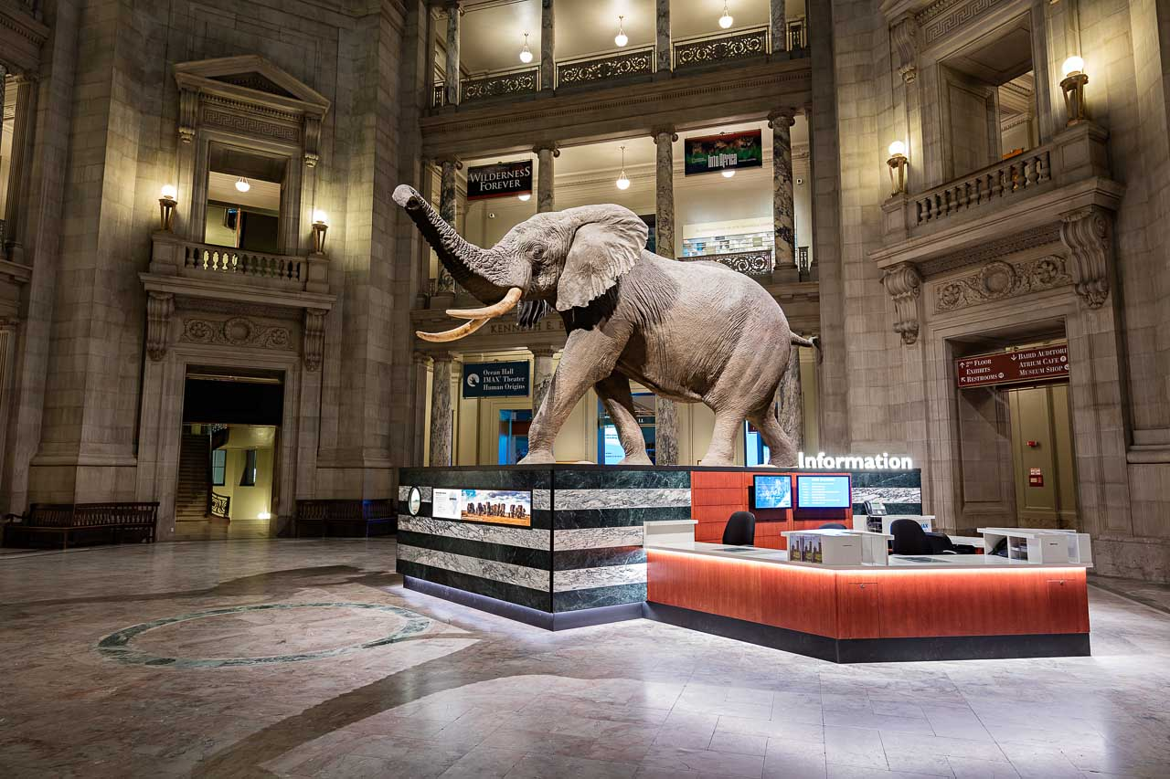 Best Exhibits For Kids At The Smithsonian Beyond The Air And
