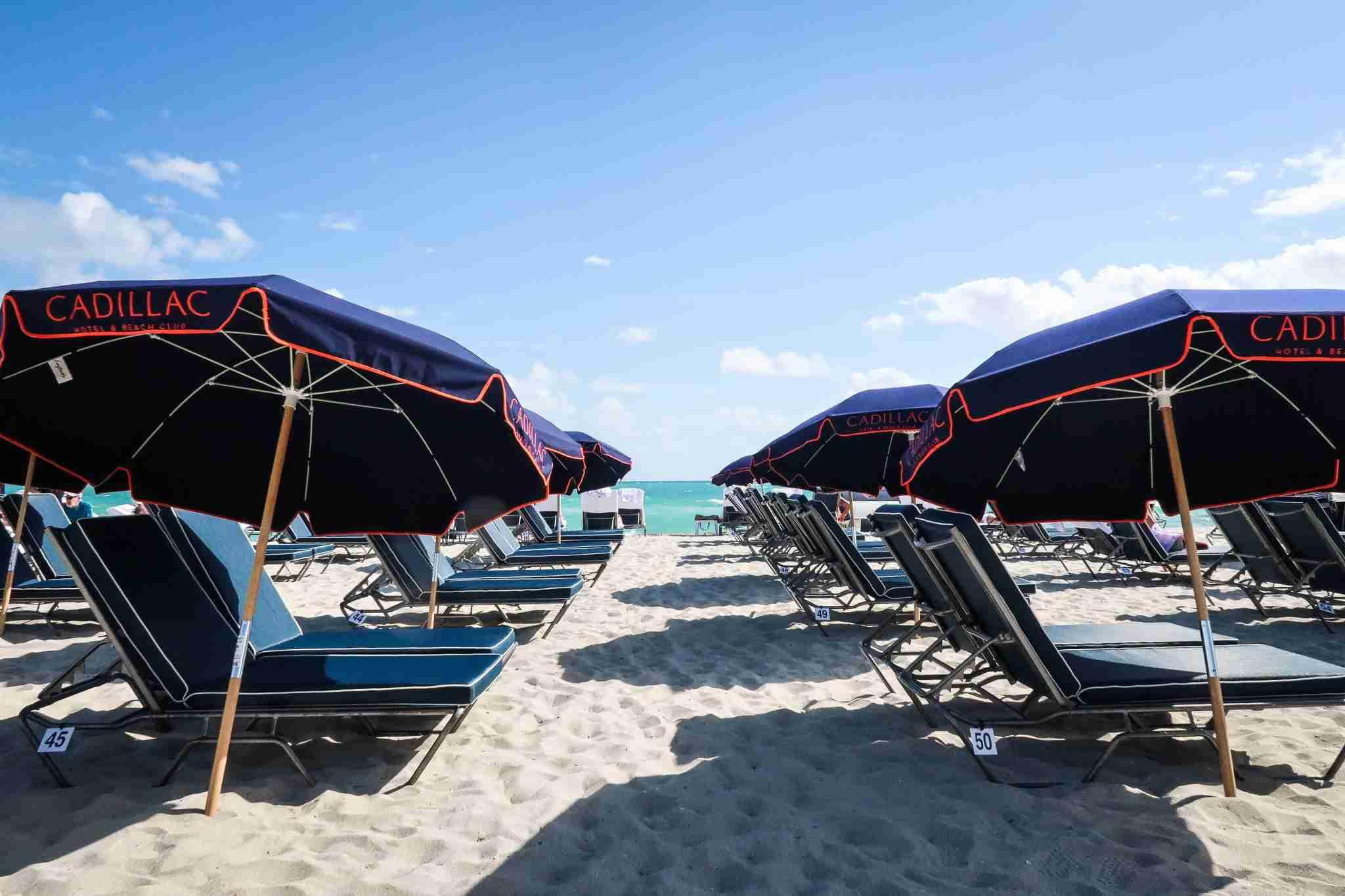 Hotel Cadillac Miami Umbrellas
