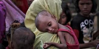 Future of Rohingyas Prostitutes, Terrorism, Unplanned Population Influx, Rape Pregnancies