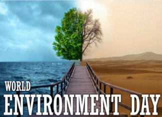 Is it Time to Celebrate or Introspect World Environment Day?