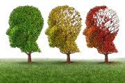 Children with HIV prone to suffer cognitive impairment: study