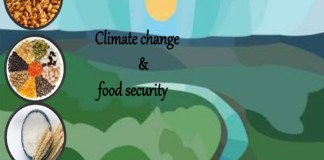 Climate change on track to create food insecurity in India?