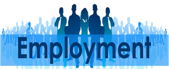 National Employment Policy to be revived within 8 Months after 5 Jobs Survey is completed THE POLICY TIMES