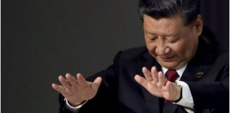 China Perturbedwith the Quad Summit; Expects Peace, Stability and Prosperity THE POLICY TIMES