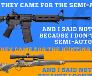 gun control feinstein