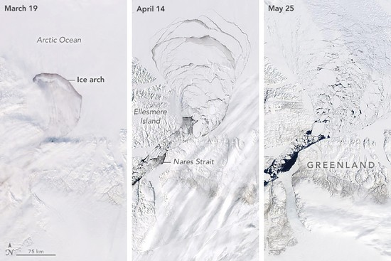 The left image shows the arch when it was still mostly intact on March 19, 2019. Notice the long, linear cloud streamers just south of the arch. This cloud type usually forms in the presence of strong winds, one factor that can help an ice arch collapse. By April 14 the solid pack of ice behind the arch was crumbling (middle), and by May 25 the broken bits were flowing freely through the Nares Strait (right).