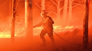 , Trump hasn't tweeted about West Coast wildfires since November, when he tweeted nonsense, The Politicus