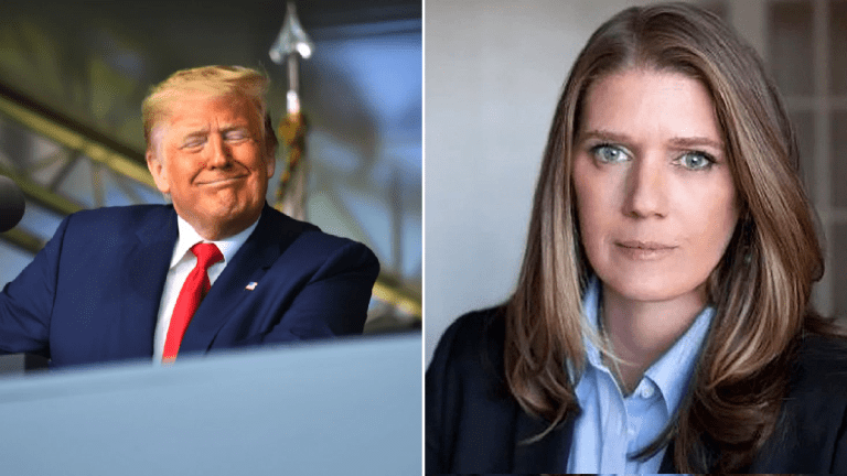 Mary Trump, niece of IMPOTUS* may unravel the Trump campaign