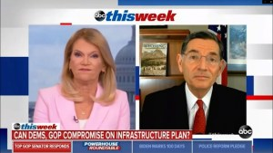 SHOCKED! ThisWeek's Host Martha Raddatz stopped a lying Republican Senator It's about time!