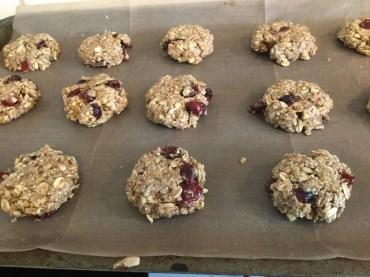 Gluten-free/vegan version with dried cranberries