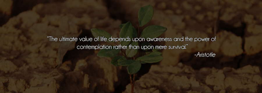 Valuing Life, Is It That Difficult?