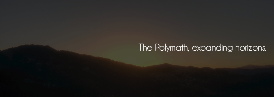 Now That I've Changed, Where Does The Polymath Stand?