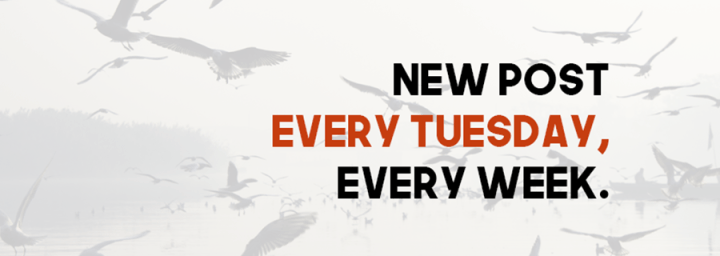 The Polymath Will Now Have A New Post Every Tuesday, Every Week