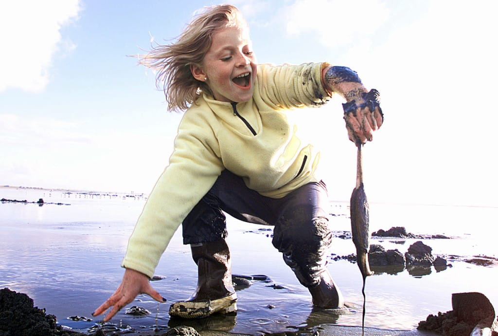 child with clam in Ocean Shores