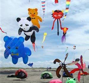 several kites on the beach