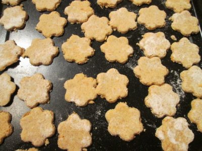 Dog treats biscuits