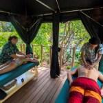 Discovery Cove presenta dos nuevas experiencias exclusivas