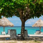 Lo último sobre Jamaica