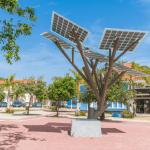 ¡Aruba: la isla del caribe más comprometida con el medio ambiente!